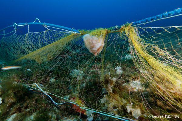 Depuis quelques années, une dynamique portée par des acteurs locaux s'est enclenchée pour commencer à retirer les filets perdus en Mediterranée