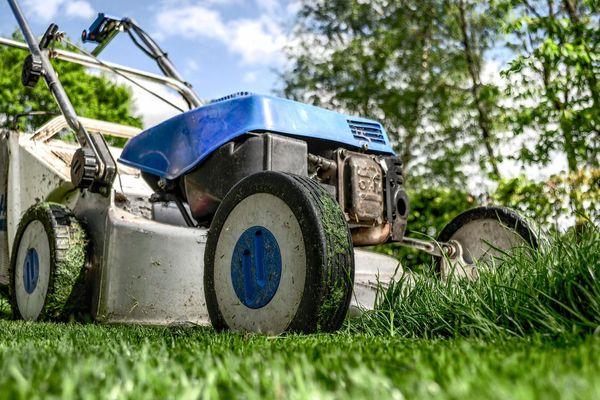 Attention, on ne peut pas forcément tondre la pelouse quand on veut !