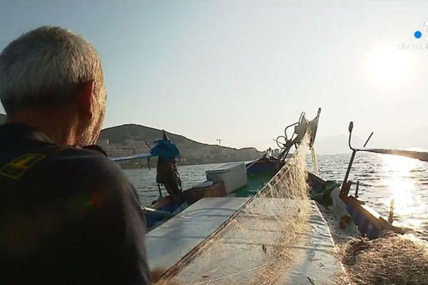 Ce jourl-là, Xavier d'Orazio, pêcheur en mer autour d'Ajaccio, tirera de sa pêche matinale un revenu de 50€. Ce qui ne couvre même pas le coût du carburant.
