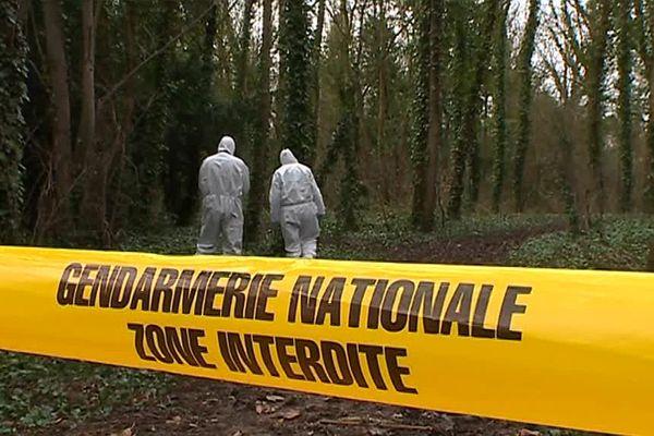 Dans la Marne, ils sont cinq sur le plateau technique à travailler avec du matériel de pointe.