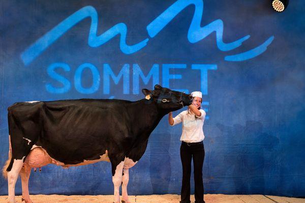 La 27e édition du sommet de l'élevage de Cournon-d'Auvergne s'ouvre le 3 octobre sur fond de tensions avec les mouvements anti-spécistes (ici une prim'holstein lauréate de l'édition 2017).
