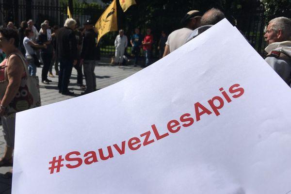 Les Apis manifestent à Pau  ce jeudi 7 juin 2018.