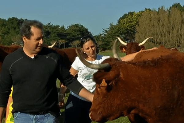 A Pénestin, André et Cristina pratiquent l'élevage à taille humaine. Et depuis le printemps, Cristina gère aussi les commandes de La Ruche qui dit Oui !