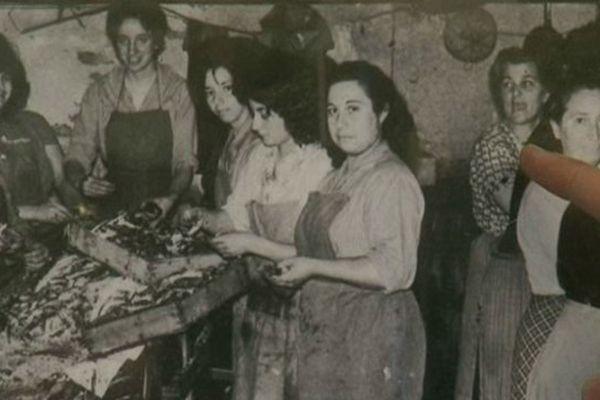 La famille Roque : plusieurs générations consacrées à la salaison de l'anchois, à Collioure