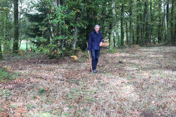 L'association Cèpe du Périgord veille à proposer des cèpes dont la récolte se fait en respectant la durabilité de la ressource