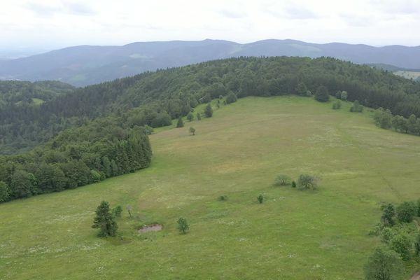 La Haute Bers culmine à 1 252 mètres d'altitude entre les départements du Haut-Rhin et des Vosges.