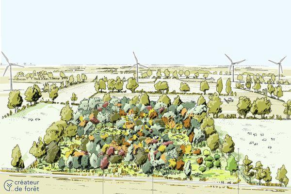 Dans cent ans, voilà à quoi pourrait ressembler ce coin de la plaine d'Argenson dans les Deux-Sèvres