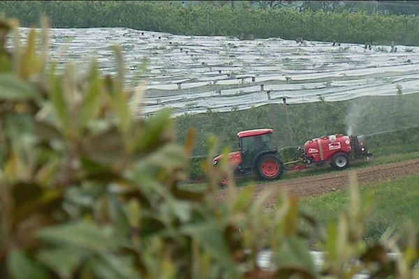 En Corrèze, la vue d'un riverain sur le traitement phytosanitaire d'un verger en 2017.