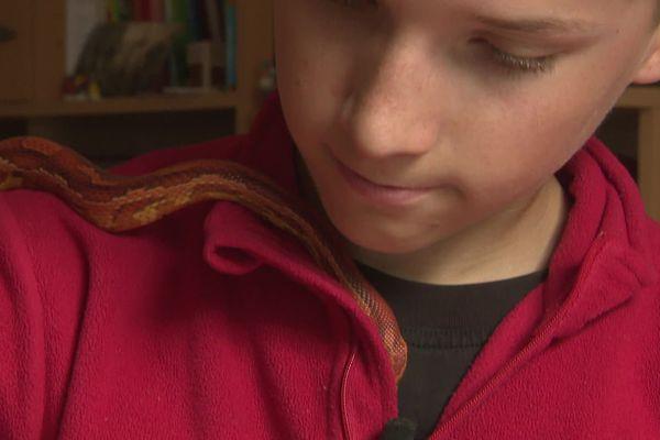 Eddy et Mia, son jeune serpent des blés.