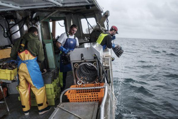 """Les pêcheurs titulaires du permis """"Baie de Granville"""" à nouveau autorisés à accéder aux eaux de Jersey."""