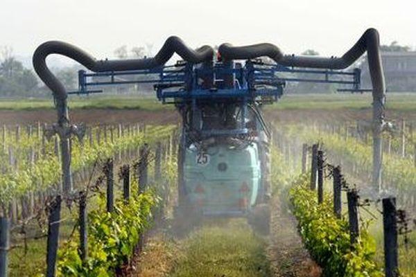 Épandage dans une vigne