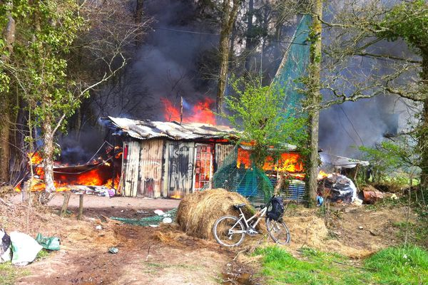 Les gendarmes ont donné l'assaut en forêt de Rohanne