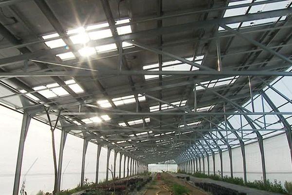 A Toreilles, dans les Pyrénées-Orientales, l'installation de serres agricoles photovoltaïques se développe, on produit à la fois des cultures agricoles mais aussi de l'énergie solaire - 26 avril 2017