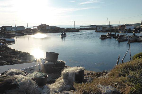 Les cabanes de pêcheurs de l'étang de l'Ayrolle, à Gruissan.