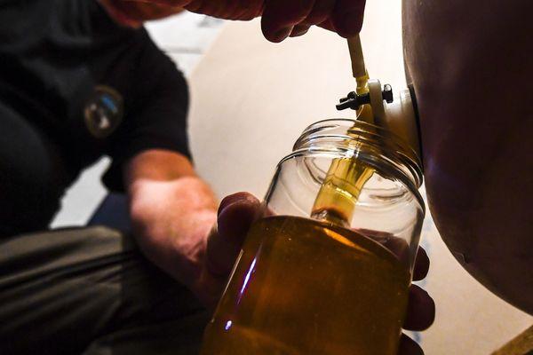 Cette année, la récolte de miel sera inférieur à 10.000 tonnes.
