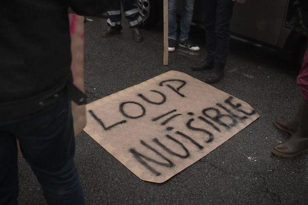 Les agriculteurs de la filière ovine avaient manifesté pour obtenir davantage de compensations face aux dégâts causés par le loup en Saône-et-Loire