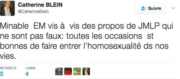 Propos islamophobes dans un tweet de Catherine Blein rapportés par BuzzFeed