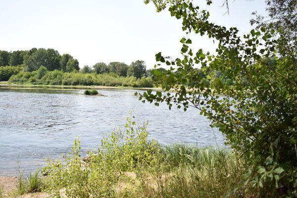 A 20 minutes d'Orléans, la réserve Saint-Mesmin s'étend sur 263 hectares.