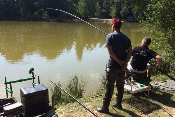la pêche : une histoire de passion et de détente