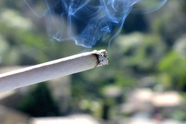 Allumer une cigarette ou un feu de camp en forêt est passible d'une amende de 135 euros