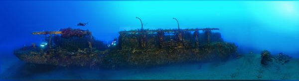 La première photo en panoramique sous-marine