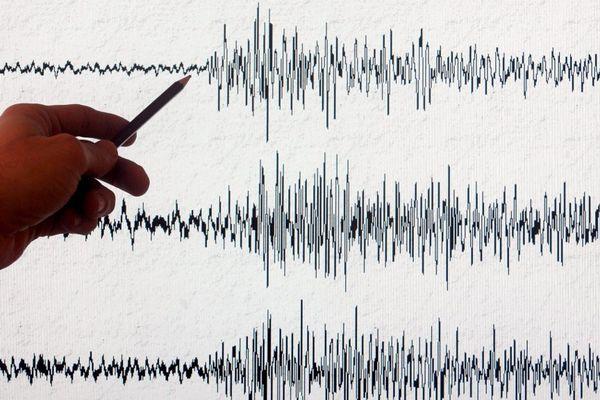 Illustration - Un sismographe de l'Observatoire du réseau national de surveillance sismique affiche l'enregistrement d'un séisme.