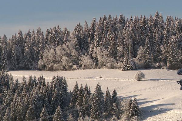Aux Fourgs, la journée était idyllique ce samedi 5 décembre, avec l'arrivée de la neige.