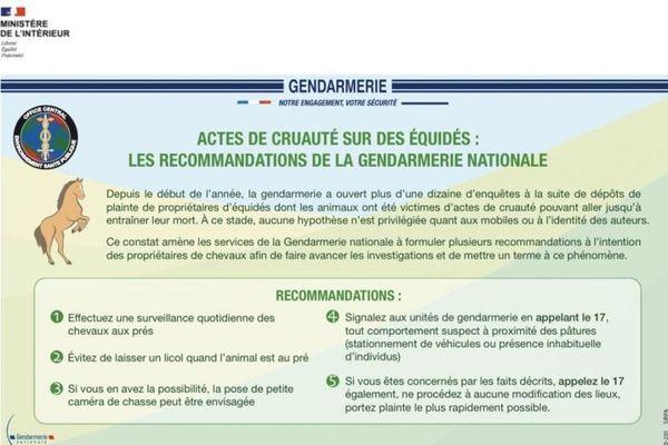 Les recommandations des gendarmes auprès des propriétaires de chevaux pour protéger leurs animaux et alerter les autorités au plus vite en cas d'attaque.