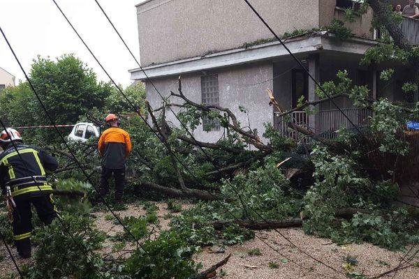 Un arbre tombé sur une maison, à Soisy-sur-Seine, dans l'Essonne, après l'orage du 10 juin 2018.