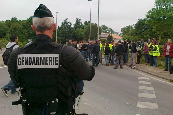 Les zadistes d'Ecillais (17) réunis au carrefour situé devant le site après leur évacuation par les forces de l'ordre.