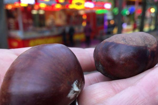 """La confusion entre la châtaigne et le marron est entretenue par le nom des recettes comme la """"crème aux marrons""""."""