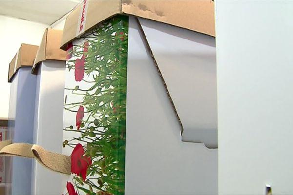 Quelques exemples de cercueils en cellulose, ils sont complétés par un drap pour la présentation du corps