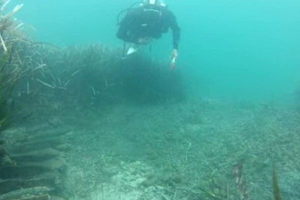 Fouilles sous-marines dans la baie d'Agay