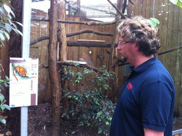 Nicolas Leroux, chef animalier et responsable biologique, devant la cage vide des tamarins-lions dorés volés au zoo de Beauval.