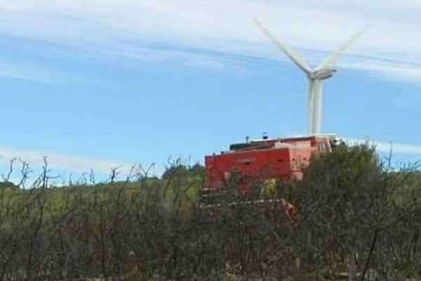 Villeveyrac (Hérault) - un incendie a ravagé 66 hectares près des éoliennes - 20 septembre 2013.