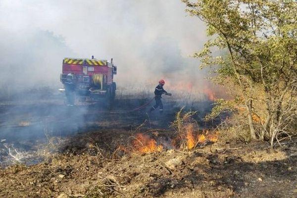 Jeudi 29 août, les sapeurs pompiers du Gard ont lutté contre un feu de forêt sur la commune de Souvignargues, près de Sommières. L'incendie a parcouru 15 hectares.