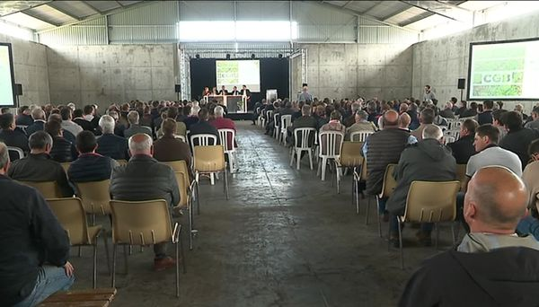 Près de 500 producteurs de betteraves, soit la moitié de ceux qui produisent pour la sucrerie de Cagny,  se disent prêts à mettre la main à la poche pour une montée en capital / Photo du 22 mai 2019.