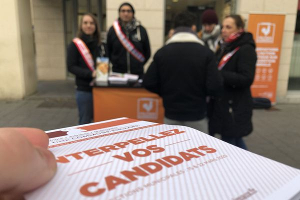 Les membres de l'association L214 invitent les Rémois à interpeller les candidats aux élections municipales à propos de la question animale