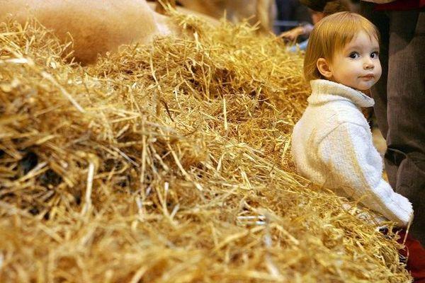 Une fillette est assise sur une botte de paille, le 1er mars 2006 sur un stand du salon international de l'Agriculture à Paris.