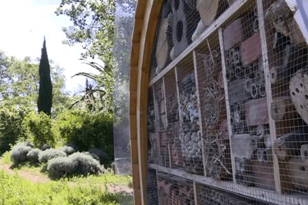 120 hôtels à insectes hébergent des abeilles sauvages à Marseille