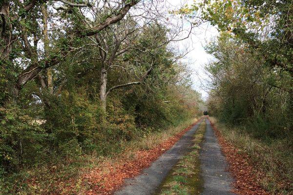 Le chemin qui mène au terrain au site de la future prison d'Angers Trélazé