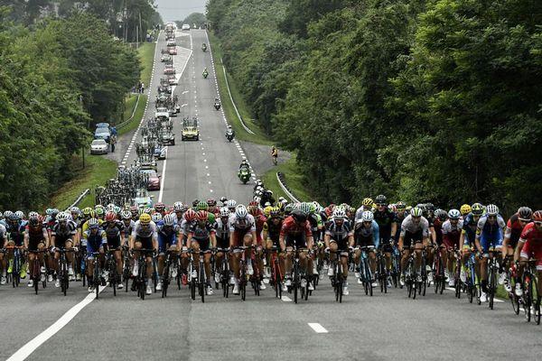 Le peloton roule lors de la 12e étape de la 104ème édition de la course cycliste du Tour de France, le 13 juillet 2017 entre Pau et Peyragudes.