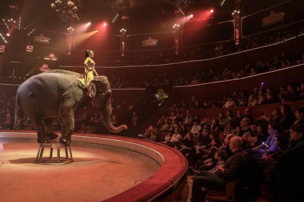 Représentation Bouglione au cirque d'hiver