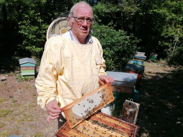 Gilbert Morizur, président de l'Abeille Finistérienne, devant ses ruches, à Saint-Urbain