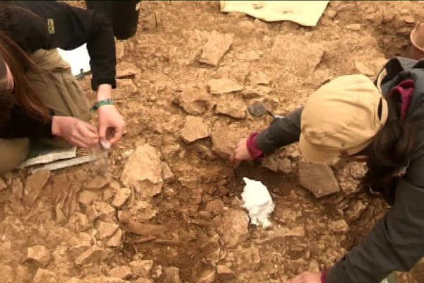 Un nouveau site de chasse préhistorique révélé dans la côte chalonnaise