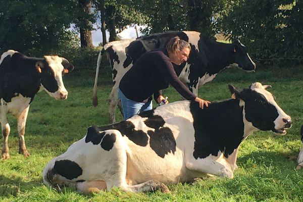 Voilà plus de dix ans que Marie-Edith Macé soigne ses vaches laitières avec des huiles essentielles... sans en avoir vraiment le droit.