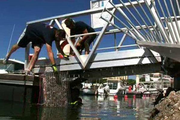 Carnon (Hérault) - L'entreprise Ecocean installe des abris pour poissons dans les ports du littoral - juillet 2015.