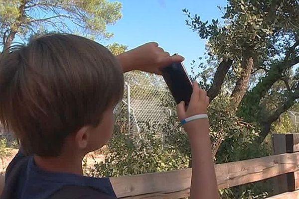 Montpellier - les collégiens utilisent leur portable pour le cours en plein air au zoo du Lunaret - 4 septembre 2018.