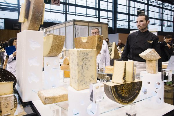 Marc Janin , fromager de Champagnole MOF 2015 au salon de l'agriculture de Paris