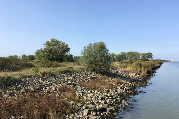 Le site du Carnet, sur les rives de la Loire